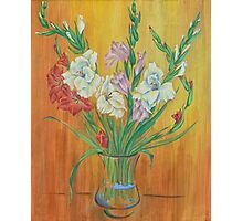 Gladioli in Color Photographic Print
