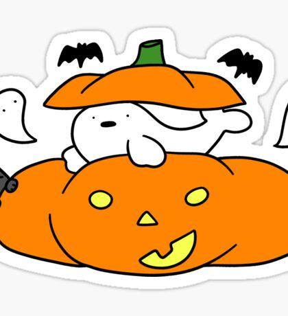 Pumpkin Harp Seal and Cat Sticker