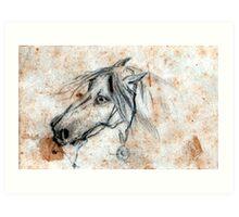 Ancient  European horse Art Print