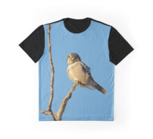 Hawk eye on the look out Graphic T-Shirt