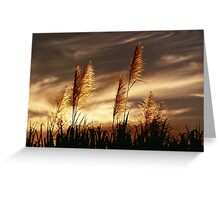 Smoky Sunset Greeting Card
