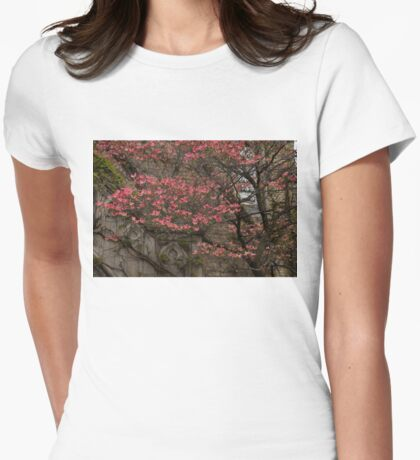 Pink Spring - Dogwood Filigree and Lace Womens Fitted T-Shirt