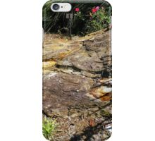 Partially Petrified  iPhone Case/Skin