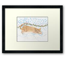 The Cat of Ice and Fire Framed Print