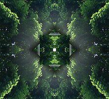 Crystallized by Jack Wingo
