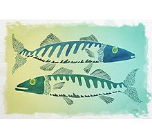 Fish Duo Photographic Print