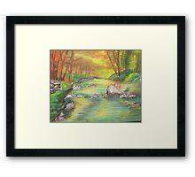 Peaceful River Scene Framed Print