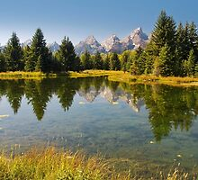 A landscape of Schwabacher's Landing by carolynrauh