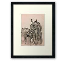 Bridled Horse Framed Print