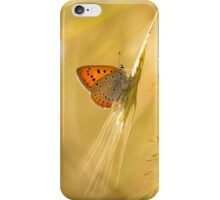 Orange butterfly on the dry grass iPhone Case/Skin
