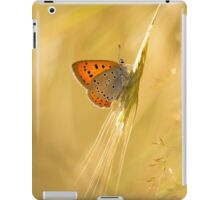 Orange butterfly on the dry grass iPad Case/Skin