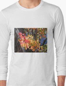 Autumn Colours Long Sleeve T-Shirt