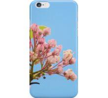 mountain laurel iPhone Case/Skin