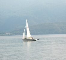 Sailboat on Lake Como by Dotti Hannum
