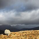 Stone and Storm in colour by beavo