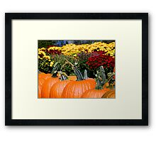Pumpkin Patch - Close Up  ^ Framed Print