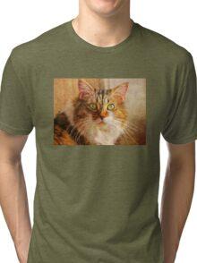 Cat Portrait – Pretty Girl     Tri-blend T-Shirt