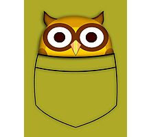 Pocket owl Photographic Print