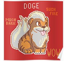 FIRE DOGE Poster