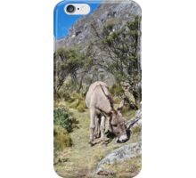 Among the Lupines iPhone Case/Skin