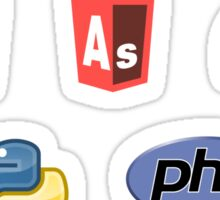 web developer programming language set v2 Sticker