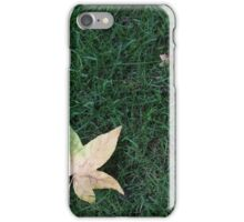 Fallen Maple Leaf iPhone Case/Skin