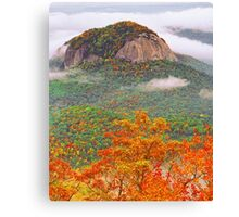 LOOKING GLASS ROCK Canvas Print