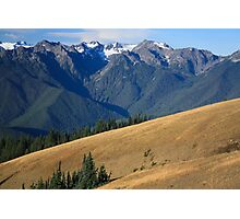 Mount Carrie beyond black-tailed deer on the meadows of Hurricane Ridge, Olympic National Park Photographic Print