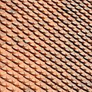 Ornamental roof tiles by stuwdamdorp