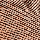 Intricate roof tiles pattern  by stuwdamdorp