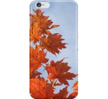 Orange Autumn Fall Tree LEAVES Blue Sky Art Prints iPhone Case/Skin