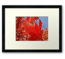 RED Fall Tree LEAVES Art PRINTS Canvas Autumn Framed Print