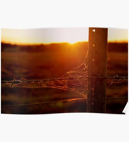 Rustic Sunset By Lorraine McCarthy Poster