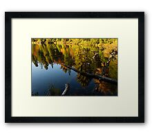 Mesmerizing Fall Reflections Framed Print