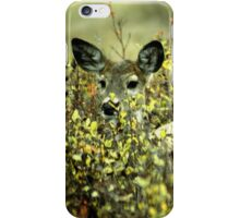 Deer in brush iPhone Case/Skin