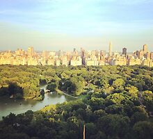 NYC Skyline and Central Park by Lagoldberg28