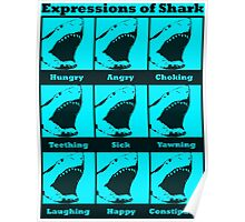 Expressions of Shark Poster