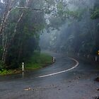 In the Clouds on Mount Glorious Road by MichaelJP