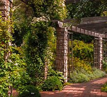 PERGOLA  AT WEGERZEN PARK DAYTON by pjm286