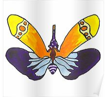 Colorful Moth Poster