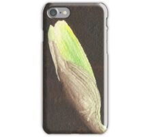 Daffodil Flower Bud iPhone Case/Skin