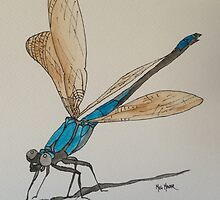 Blue Dragonfly by MegMader