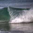 Waves by Leonie Morris