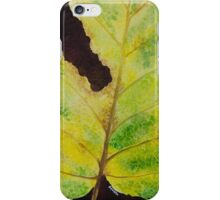 White Mulberry Leaf iPhone Case/Skin