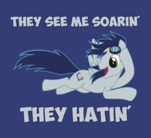 They See Me Soarin' - They Hatin' by killerdude