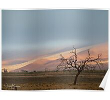 The Cold Namibian Morning Poster