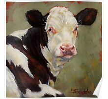 A Calf Named Ivory Poster