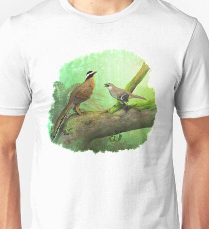 Aurornis and Eosinopteryx fight! Unisex T-Shirt