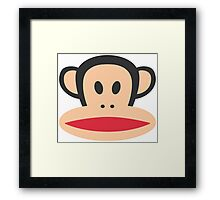 Monkey is Highly Suspicious Framed Print