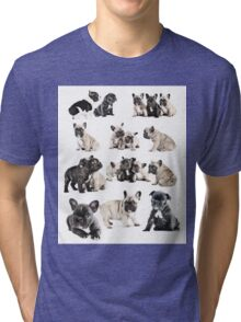 Frenchie Favourites Tri-blend T-Shirt